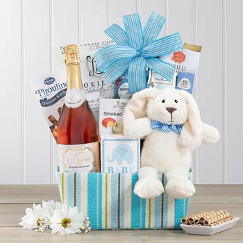 Baby Boy Celebration Gift Basket