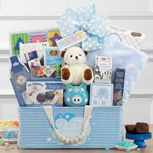Baby Boy Animal Friends Basket