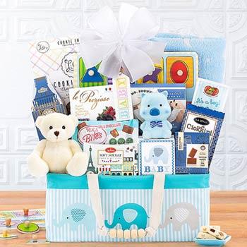 Baby Boy Animal Friends Basket