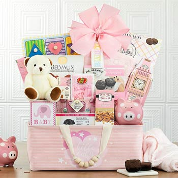 Baby Girl Animal Friends Basket