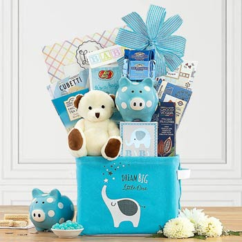 Newborn Basket for Baby Boy