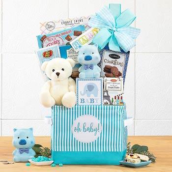 Newborn Basket for Baby Boy