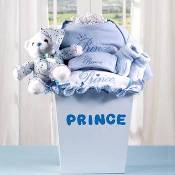 Baby Boy Prince Gift Basket