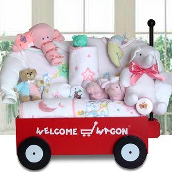 Baby Gift Baskets Baby Girl Welcome Wagon