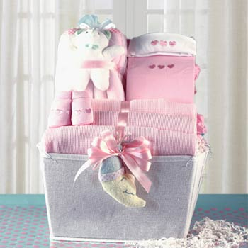 Gift Basket for Newborn Girl
