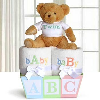 Baby Gift Basket for Twins
