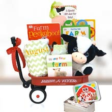 Baby Einstein Farm Gift Basket