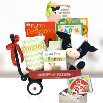 Baby Einstein Farm Gift Basket