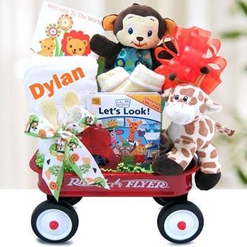 Baby Einstein Safari Fun Gift Set