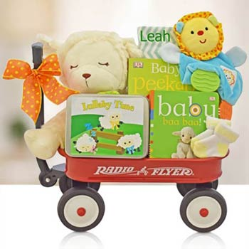 Just for Baby Gift Basket