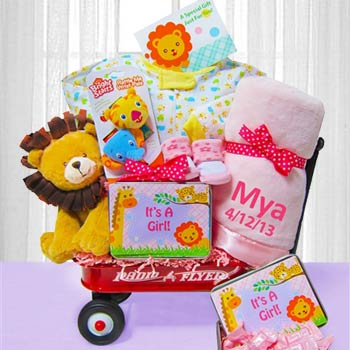 Deluxe Welcome Wagon for Baby Girl
