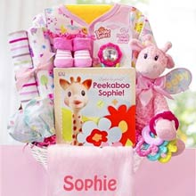 Personalized Baby Girl Safari Basket