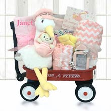 Baby Girl Stork Radio Flyer Wagon