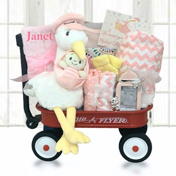 Baby Girl Stork Radio Flyer Wagon