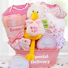 Baby Girl Special Delivery Basket