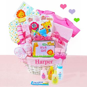 Baby Girl Jungle Gift Basket