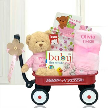 Baby Girls First Teddy Bear Basket