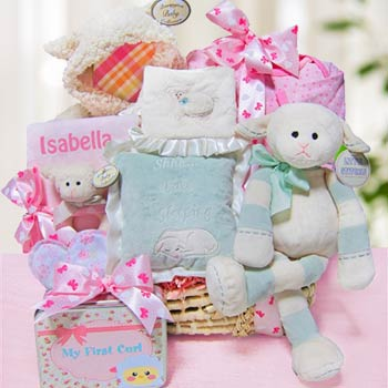 Baby's First Gift Basket