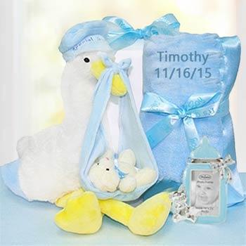 Baby Boy Stork Gift Box