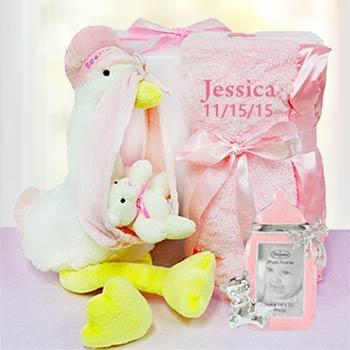 Baby Girl Stork Gift Box