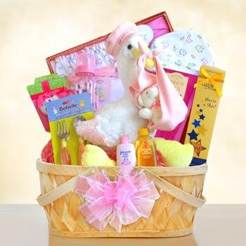 Baby Girl Stork Gift Basket