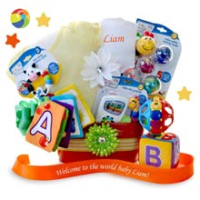 Baby Einstein Basket for Baby