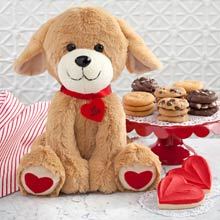 Valentine Puppy and Cookies Gift