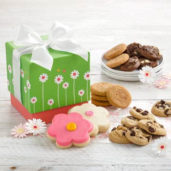 Springtime Daisies Cookie Gift